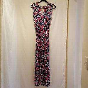 Liz Lange Maxi Dress